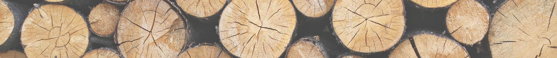 Holzverarbeitungs-Maschinen – Leasing, Mietkauf, Darlehen